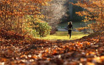 At løbe er at leve eller er det Vol. 2